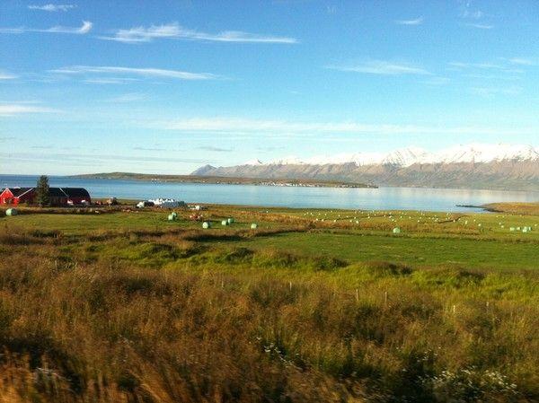 Mon fjord